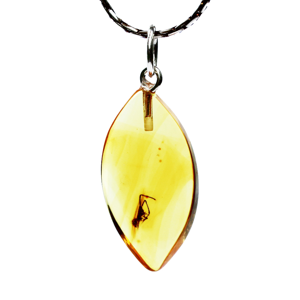Golden Amber with inclusion
