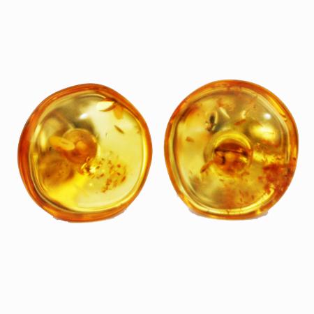 Amber Honey Studs 538