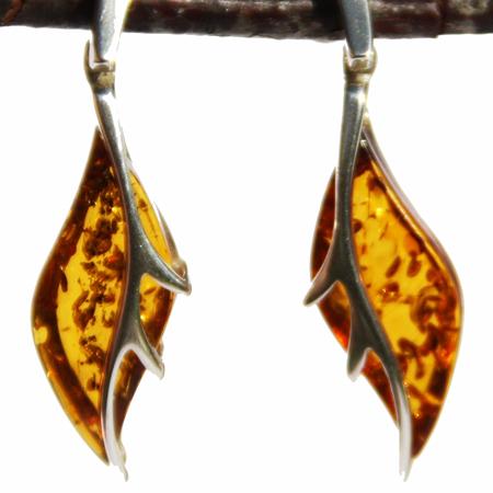 Designer Honey Earrings 3309