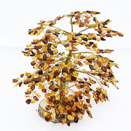 Large Autumn Colours Amber Oak Tree